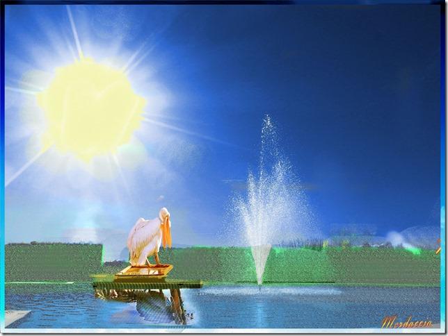 fontana con pellicano.