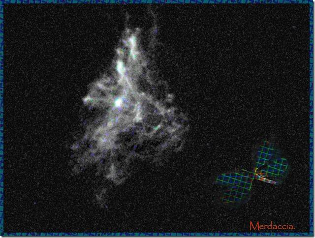barbagianni stellare