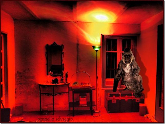 camera rossa (1)